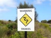 Warning-Snakes-Australia 250px