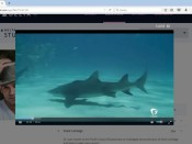 Shark Movie Delta Firefox