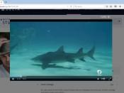 Shark Movie Delta Firefox