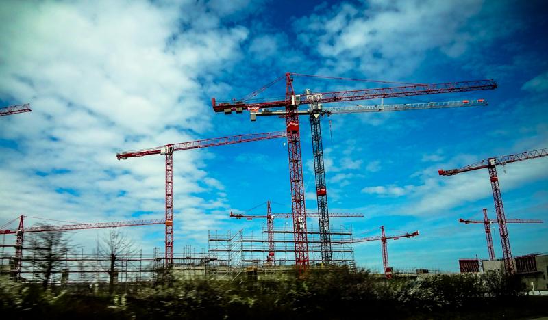 Szwajcaria Żurawie, budowa