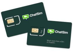 ChatSIM 250px